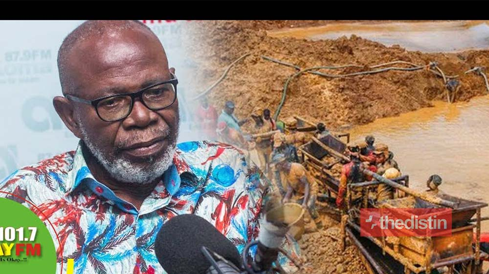 Former South Africa High Commissioner Advises Nana Addo To 'Shoot To Kill' Illegal Miners To End Galamsey (Video)