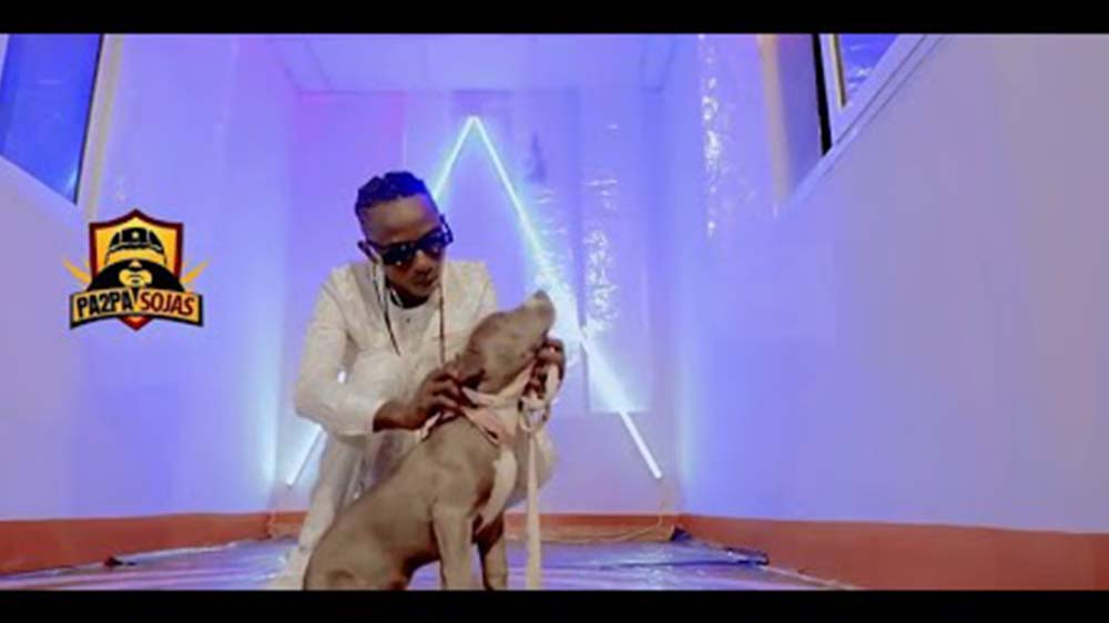 """Music Video: Patapaa """"Madi"""" Ft Queen Peezy   Watch And Download"""